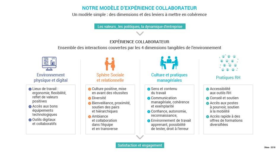 Schema_exp_Experience_collaborateur_Modele